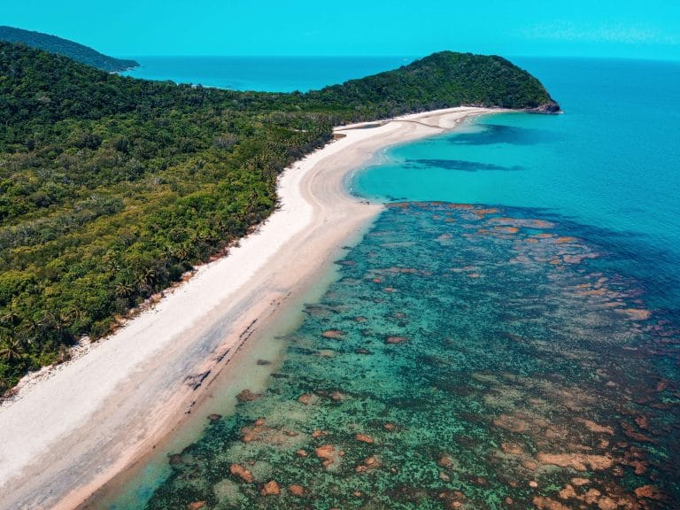 Tropical holiday daintree queensland